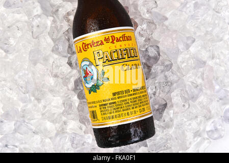 Cerveza Pacifico Clara bottle on a bed of ice. - Stock Photo