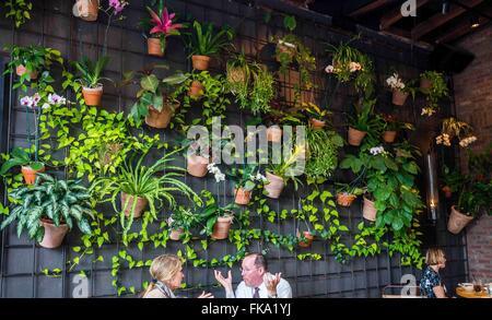 Orlando, FL, USA. 4th Feb, 2016. The food is superb at Prata in Winter Park, Florida. © Alexis Simpson/ZUMA Wire/Alamy - Stock Photo