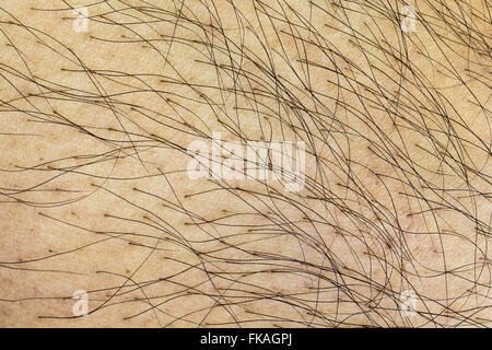 Close up shot pattern of shin hair. - Stock Photo
