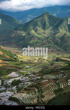Terraced rice fields in Sapa, Lao Cai, Vietnam - Stock Photo