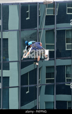 AUCKLAND - MAR 02 2016:Window cleaner works on high rise building.Window cleaning is considered one of the most - Stock Photo