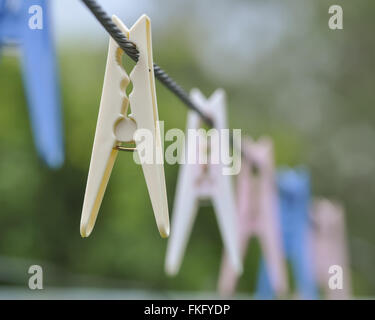 Clothes Pegs - Stock Photo