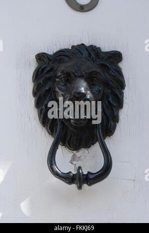 A black lion head door knocker on a door, of a residential house.