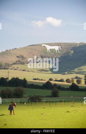 Huge chalk horse on hillside above Westbury,Somerset,England,U.K., - Stock Photo