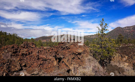 An ancient lava flow covers the ground at Sunset Crater National Monument in Arizona - Stock Photo