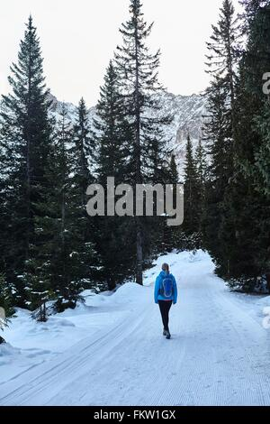 Rear view of young woman hiking along snowy rural road, Austria - Stock Photo