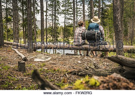 Rear view of father and son sitting on fallen tree in forest, Red Lodge, Montana, USA - Stock Photo