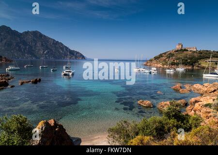 Elevated view   yachts anchored in bay, Girolata, Corsica, France - Stock Photo