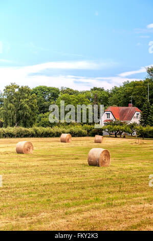 A typical countryside view of swedish farmland in the skane region of the country. - Stock Photo
