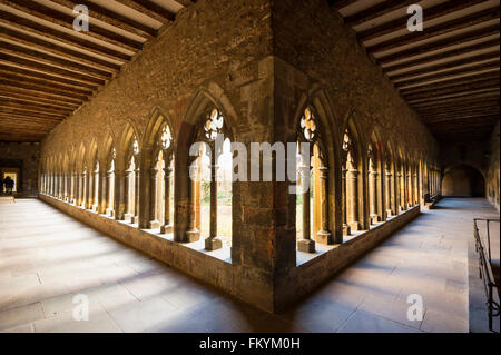 Cloister, Museum Unterlinden, Rue d'Unterlinden, Colmar, Alsace, France - Stock Photo