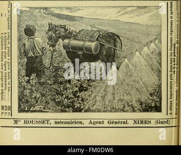 Revue de viticulture - organe de l'agriculture des rC3A9gions viticoles (1898) - Stock Photo