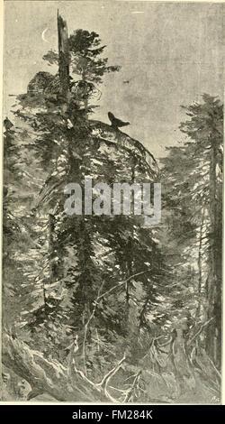 Durch Bosnien und die Herzegovina kreuz und quer; Wanderungen (1897) Stock Photo