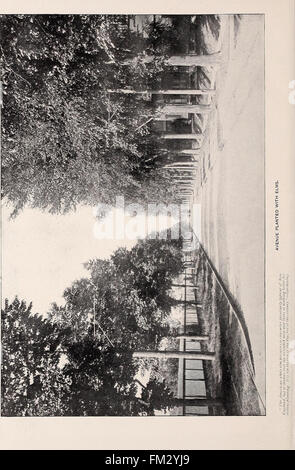 Ellwanger and Barry - Mount Hope nurseries (1898)