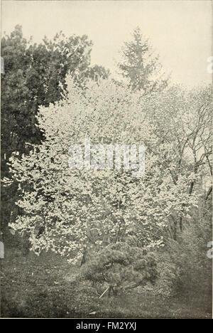 Ellwanger and Barry - Mount Hope nurseries (1901)