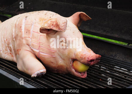 young pig prepared to be cooked on a big grill - Stock Photo