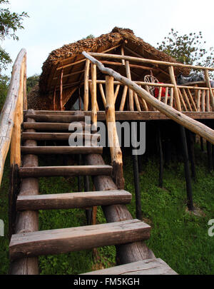 A rugged wooden staircase leading up to a rustic wooden and thatch hotel room built on stilts in the forest. - Stock Photo
