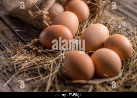 A pile of brown eggs in a nest - Stock Photo