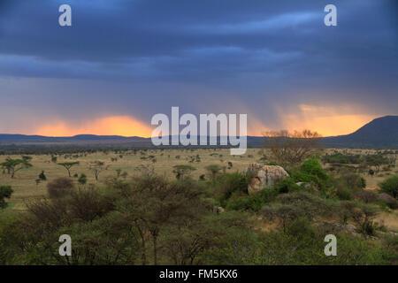 A sunset through rain clouds on the african savannah - Stock Photo