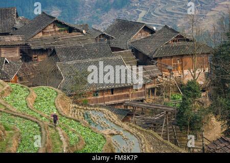 China, Guizhou, Jiabang, village amidst terraced rice paddies - Stock Photo