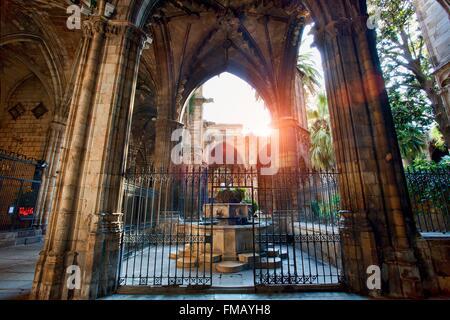 Spain, Catalonia, Barcelona, Barcelona's Cathedral - Stock Photo