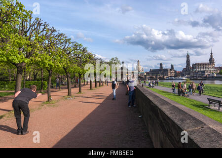 People playing petanque in the right Bank of the Elbe, Dresden, Saxony, Germany - Stock Photo