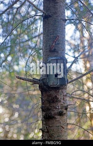 France, Haute Saone, Private park, surveillance camera - Stock Photo