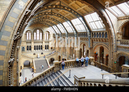 Natural History Museum interior arcade with people and tourists in London - Stock Photo