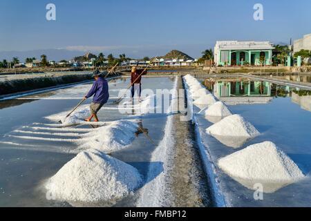 Vietnam, Ninh Thuan province, Phan Rang, salin, harvesting salt in the salins - Stock Photo