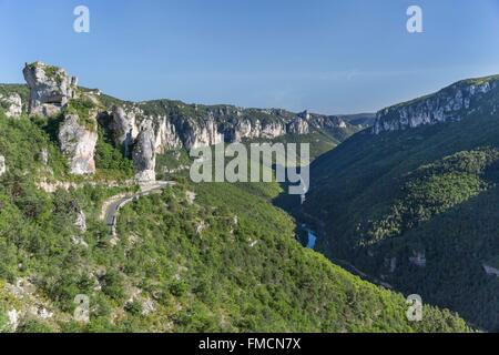 France, Lozere, Les Vignes, Tarn gorges, the canyon between Les Vignes and Le Rozier, the Causses and the Cevennes, - Stock Photo