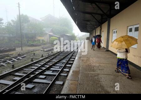 Sri Lanka, Central Province, Nuwara-Eliya, the train station in the mist - Stock Photo