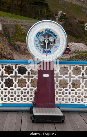 Old fashioned coin operated weighing machine on a pier - Stock Photo