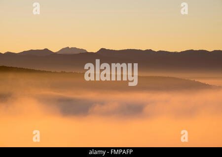 Morning fog at sunrise over the Pupplinger Au, view from Weiße Wand in Icking, in the back the Alps, Upper Bavaria, - Stock Photo
