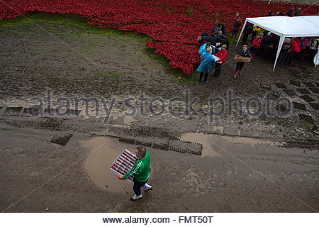 Some of 8.000 volunteers dismantling the Blood Swept Lands and Seas of Red exhibit, Tower of London, UK © Linda - Stock Photo