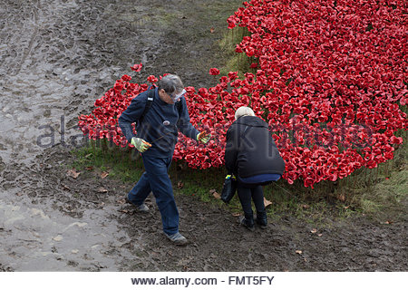 2 of 8,000 volunteers participating in the dismantling of the Blood Swept Lands and Seas of Red exhibit, Tower of - Stock Photo