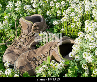 Pair of old hiking boots on flower bed, illustrating the concepts of worn out, used, or hiking in nature - Stock Photo
