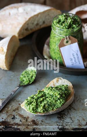 Homemade dandelion greens pesto and crostini - Stock Photo