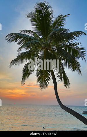 Sunset over Maldivian island. Paradise in tropics. - Stock Photo