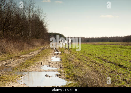 Poland, image of muddy and full of puddles road leading into the distance, a piece of winter wheat field, in early - Stock Photo