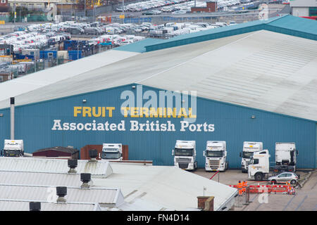 Associated British Ports ABP fruit terminal in Southampton, England. - Stock Photo
