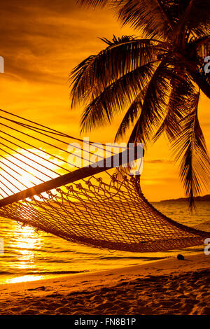 Hammock on a palm tree during beautiful sunset on tropical Fiji Islands - Stock Photo