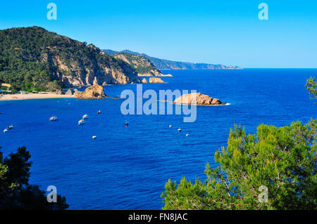 aerial view of the coast of Tossa de Mar, in the Costa Brava, Spain, with the Mar Menuda Beach on the left and the - Stock Photo