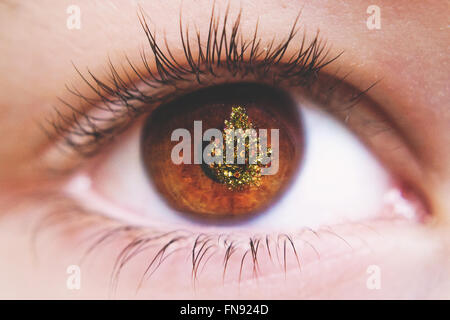 Close up of refection of Christmas tree in a child's eye - Stock Photo