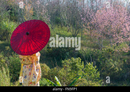 Woman wearing kimono with red umbrella - Stock Photo