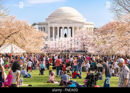 Washington DC Cherry blossoms Jefferson Memorial. Crowds on Sunday Cherry Blossom Festival. - Stock Photo