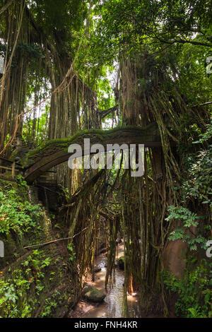 Dragon Bridge in Sacred Monkey Forest Sanctuary, Ubud, Bali, Indonesia - Stock Photo