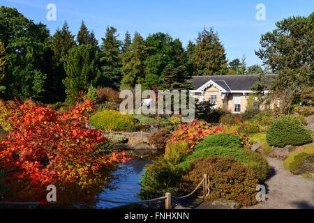 Autumn colours in rock garden and pond, Royal Botanic Garden, Edinburgh, Scotland, UK - Stock Photo