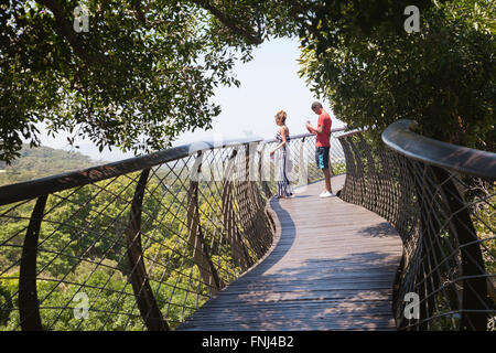 Boomslang Walkway Canopy at Kirstenbosch National Botanical Garden in Cape Town - South Africa - Stock Photo