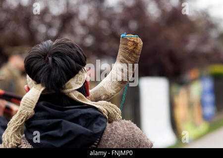 Rio Bueno, Chile. March 15, 2015.  Mapuche man plays the 'kull kull' typical instrument. Members of Mapuche indigenous - Stock Photo