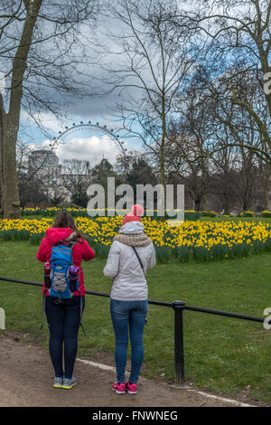 Two young women admire the daffodils in St James Park, London, UK - Stock Photo