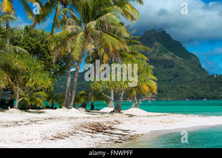 Beach of motu Tapu, a little islet in the lagoon of Bora Bora, Society Islands, French Polynesia, South Pacific. - Stock Photo